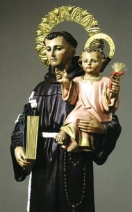 Thirteen Tuesday to Saint Anthony of Padua